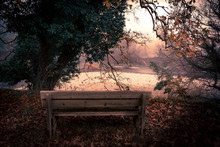 Lonely Wooden Bench With Beaut...