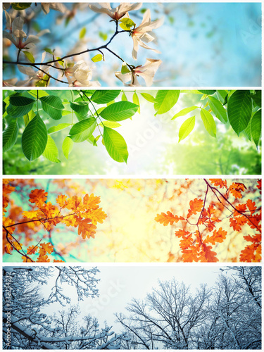 Fototapeta Four seasons