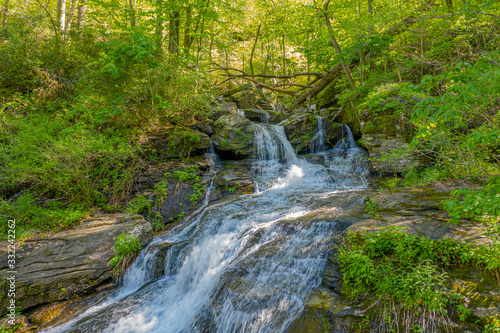 Waterfall in lush green forest during spring Melrose Falls