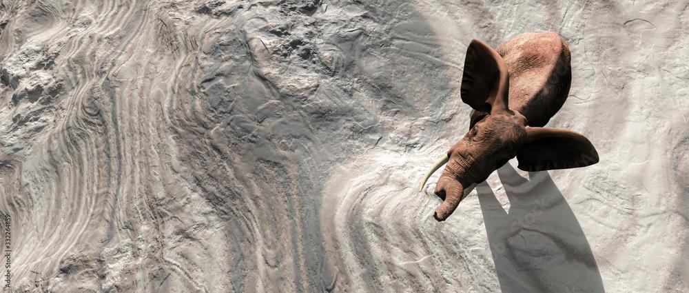 Fototapeta elephant in the desert towards an oasis