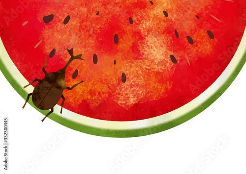 夏:虫 西瓜 スイカ割り 自然 真夏 夏休み 思い出 果物 水彩 手描き フルーツ 種 果汁 Fototapete