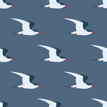 Flying Arctic Tern Seamless Pattern.