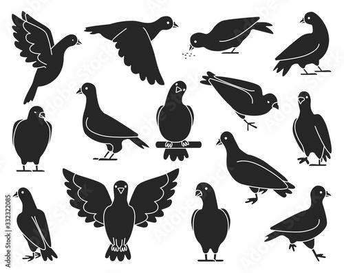 Pigeon of peace black vector illustration on white background Wallpaper Mural