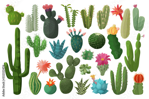 Cactus isolated cartoon set icon Fototapeta