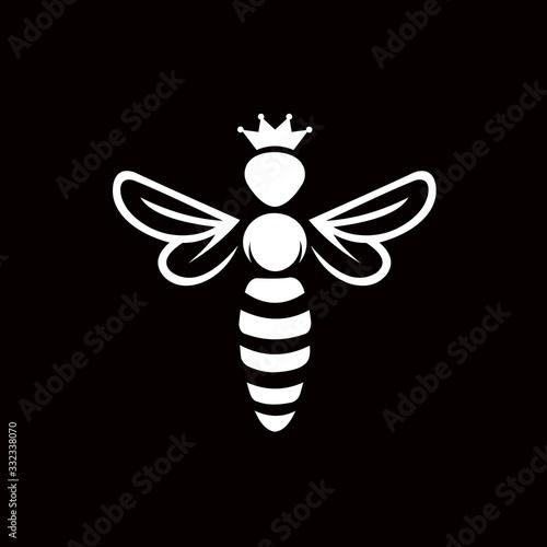 Photo bee logo vector icon design