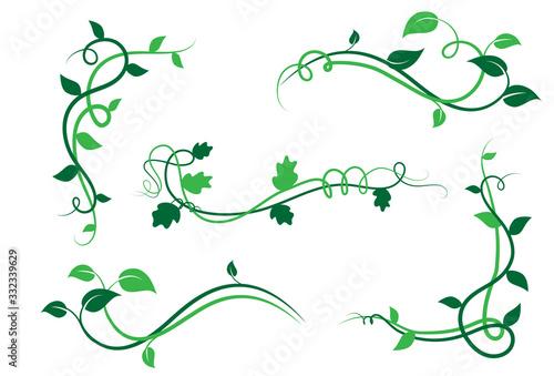 Collezione di elementi floreali decorativi, ramo con foglie di edera, liane Billede på lærred