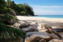 Big Rocks And Palm Leaves On Nai Thon Beach In Phuket, Thailand