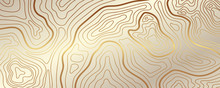 Luxury Gold Abstract Topograph...