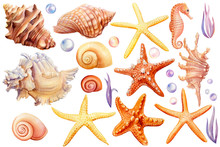 Summer Sea Clipart, Watercolor...