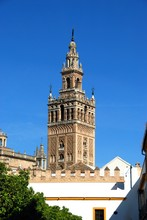 View Of The Giralda Tower Seen...