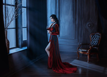 Beautiful Young Sexy Woman Vampire In Medieval Dark Castle. Red Long Gothic Dress. Black Wavy Hair. Backdrop Vintage Room Interior. Hold Glass Blood Wine. Image Queen Of Night Horror Holiday Halloween