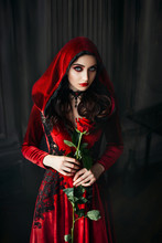 Portrait Young Gothic Woman. Velvet Costume Dress With Hood. Loose Wavy Hair. Black Beautiful Necklace. Rose In Hands. Backdrop Night Room. Holiday Makeup Red Lips Dark Eyes. Halloween Image Vampire