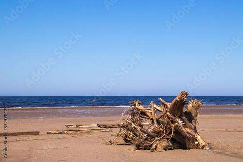Photo The harsh White sea