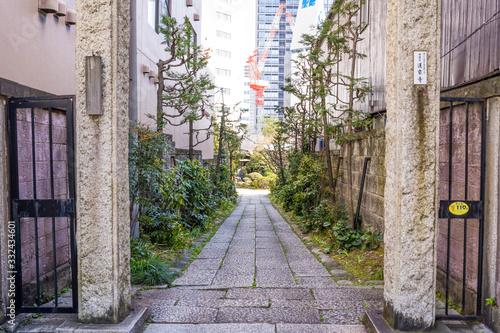 Photo まっすぐに伸びる自然豊かな狭い道