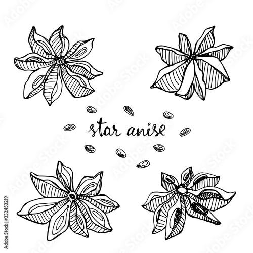 Star anise set Canvas Print