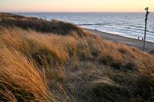 A Walk On A Winter Beach In Vl...