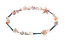 Seashells And Driftwood Oval Frame On White Background