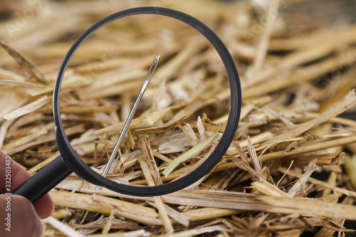 Photo Needle in Haystack with loupe
