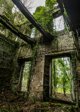 Ruins Windows Covered By Green...
