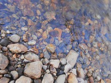 Pebbles In The River Bank