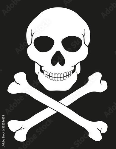 pirate skull and crossbones vector illustration фототапет