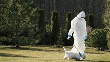 Woman In A Full Covering Equipment And Respirator Walking With A Dog In A Garden. The Isolated Person Is Following Quarantine Rules Due To Coronavirus Spread.