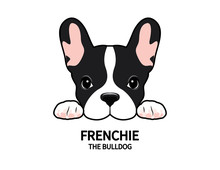 Adorable French Bulldog Waiting For His Snacks. Cute Frenchie With Bunny Ears.