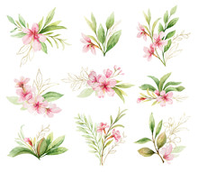 Watercolor Vector Set Of Bouqu...