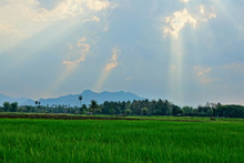 Thailand Landscape Near Nation...