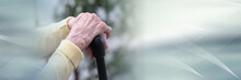 Old Woman Hands Holding A Cane...