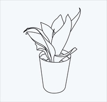 Loe  Plant Handdrow In Vector 10