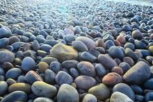 Colored Stones Round The Sea /...