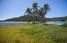 Caribbean Mayreau Island One O...