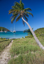 Catamarans And Boats In Salt W...