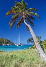 Catamarans And Boats In Salt Whistle Bay On Mayreau Tropical Island. Sailing Caribbean Travel Concept