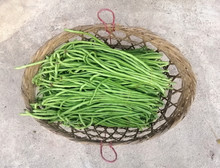 Yard-long Bean In A Bamboo Basket. Agricultural Products.