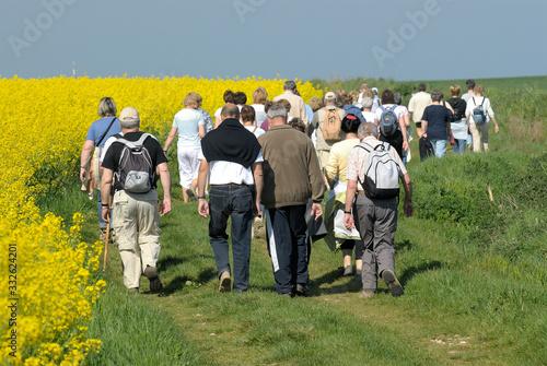 Fotografie, Tablou Randonneurs sur sentier le long des champs