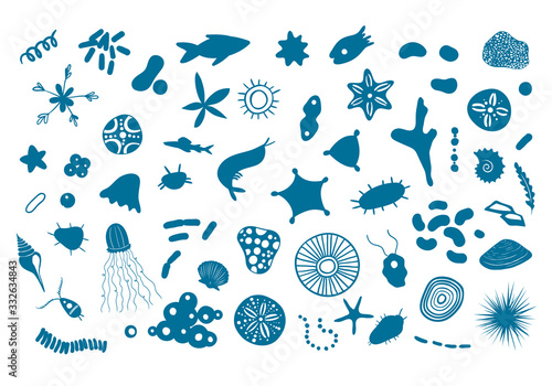 Obraz na plátně Vector illustration with microscopic marine creatures