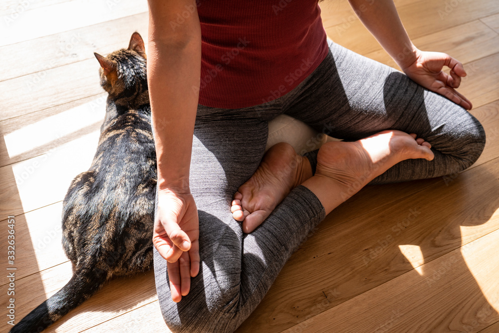 Fototapeta Young beautiful woman practicing yoga meditation indoors with her cat on wooden floor