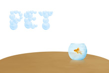 Cartoon Banner Template With Small Gold Fishe In Aquarium