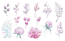 Watercolor Hand Painted Floral Set With Peony Flowers, Leaves, Berries, Star. Hand Drawn Illustration. Perfect For Patterns, Valentines Day Cards, Wedding Invitations, Baby Shower, Web Design, Blog