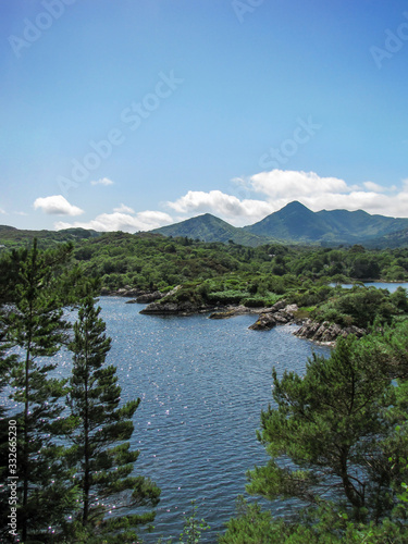 Irish Landscape, Bantry Bay with Evergreens and Mountains Wallpaper Mural