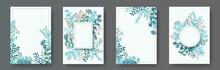 Watercolor Herb Twigs, Tree Br...