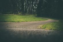 Dark Winding Walkway Path Thro...