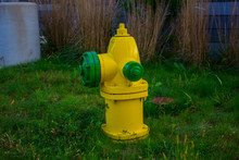 Fire Hydrant In United States Yellow And Green Colored