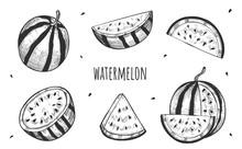 Fresh Whole Sliced Watermelon ...