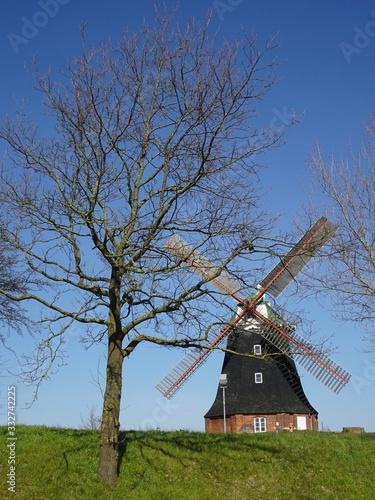 Photo Holländermühle in Stove - Frühjahr erwacht