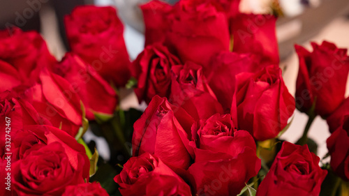 Fototapeta large bouquet from variety of vibrant red roses. obraz