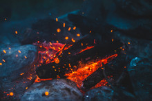 Vivid Smoldered Firewoods Burn...
