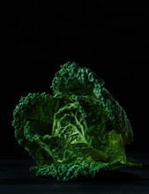 Savoy Cabbage On Black Backgro...